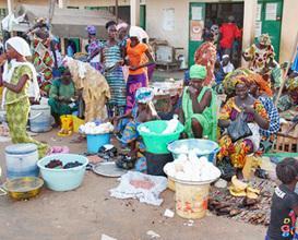Culture in Gambia