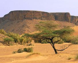 Culture in Mauritania