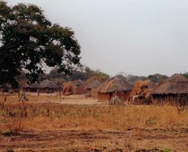 Culture in Zambia